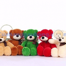 Teddy Cuddy five colors